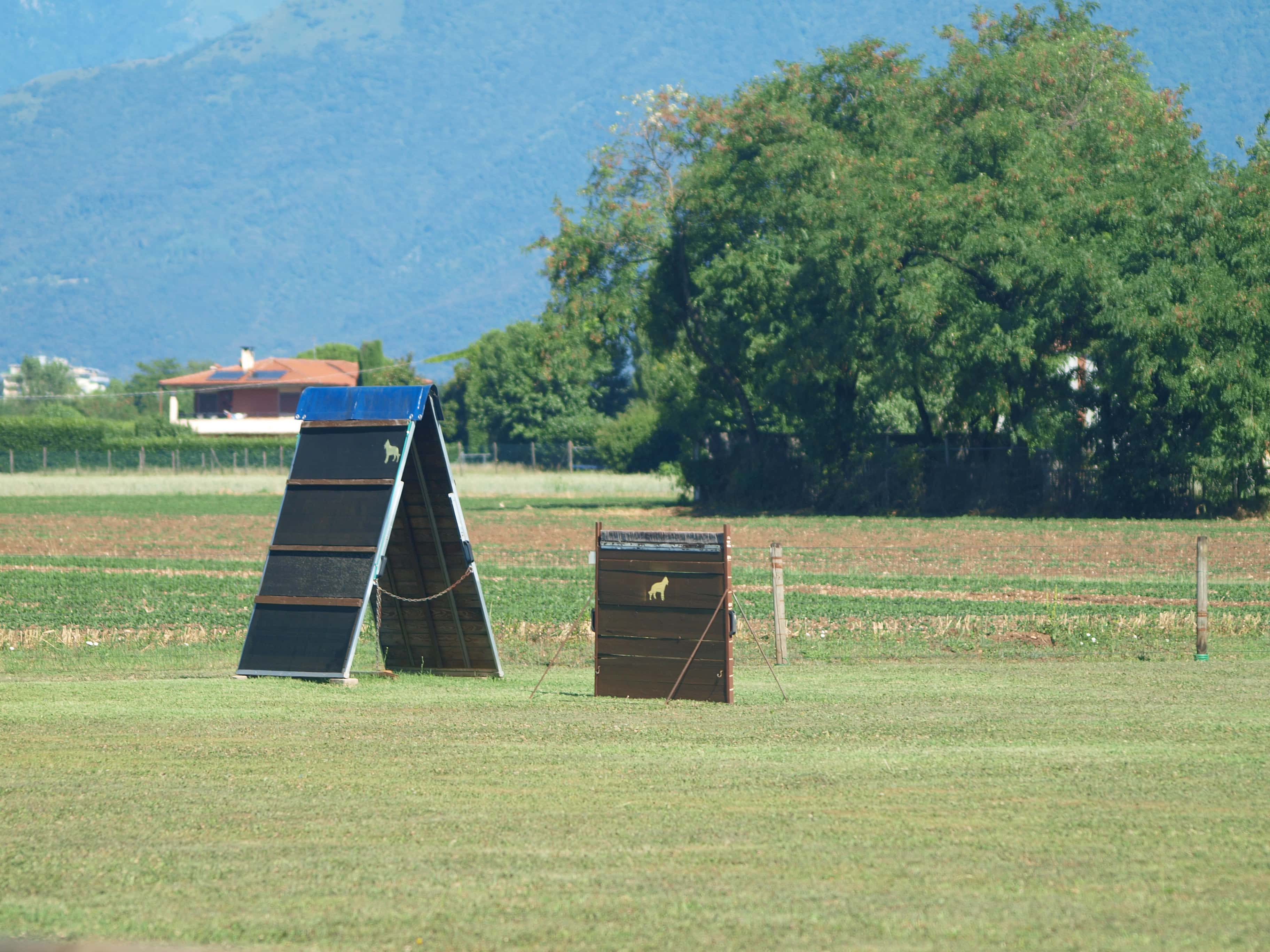 Addestramento Vicenza - Utilitydog